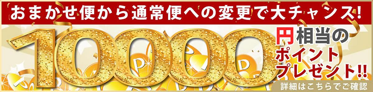 電動昇降マッサージベッドでおまかせ便から通常便への変更で10000円相当のポイントプレゼント