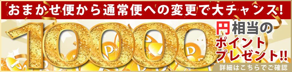 おまかせ便から通常便への変更で大チャンス!10000円相当のポイントプレゼント!!
