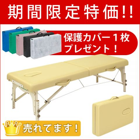 【5月31日迄期間限定&保護カバー1枚サービス】ローズ60